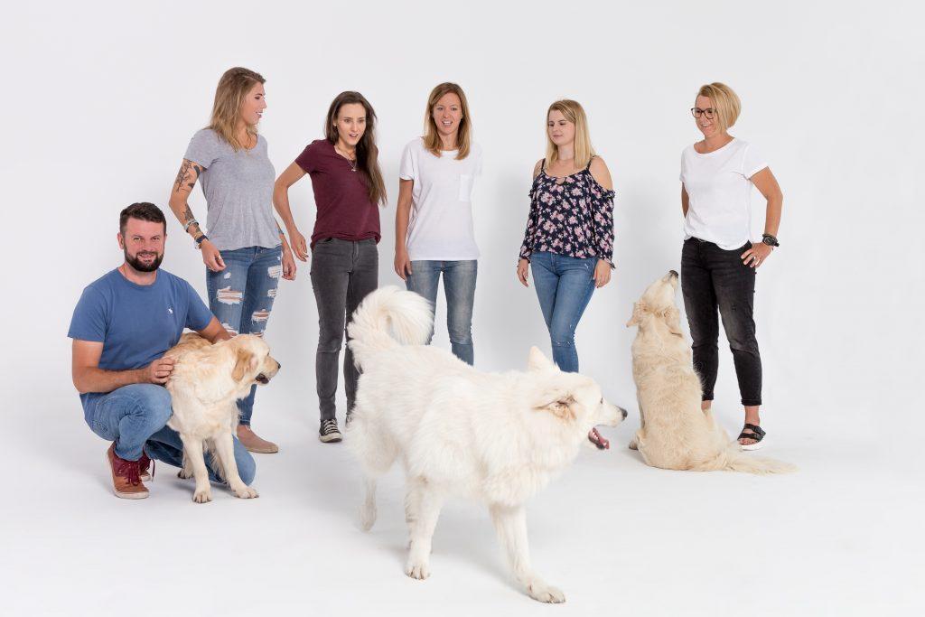szkoła dla psów - pracownicy psiego przedszkola