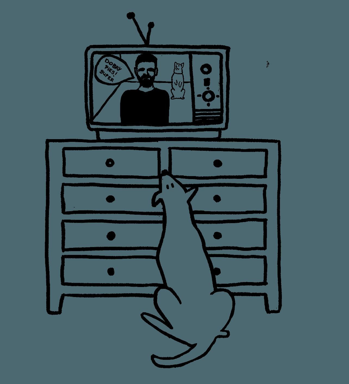 behawiorysta kurs