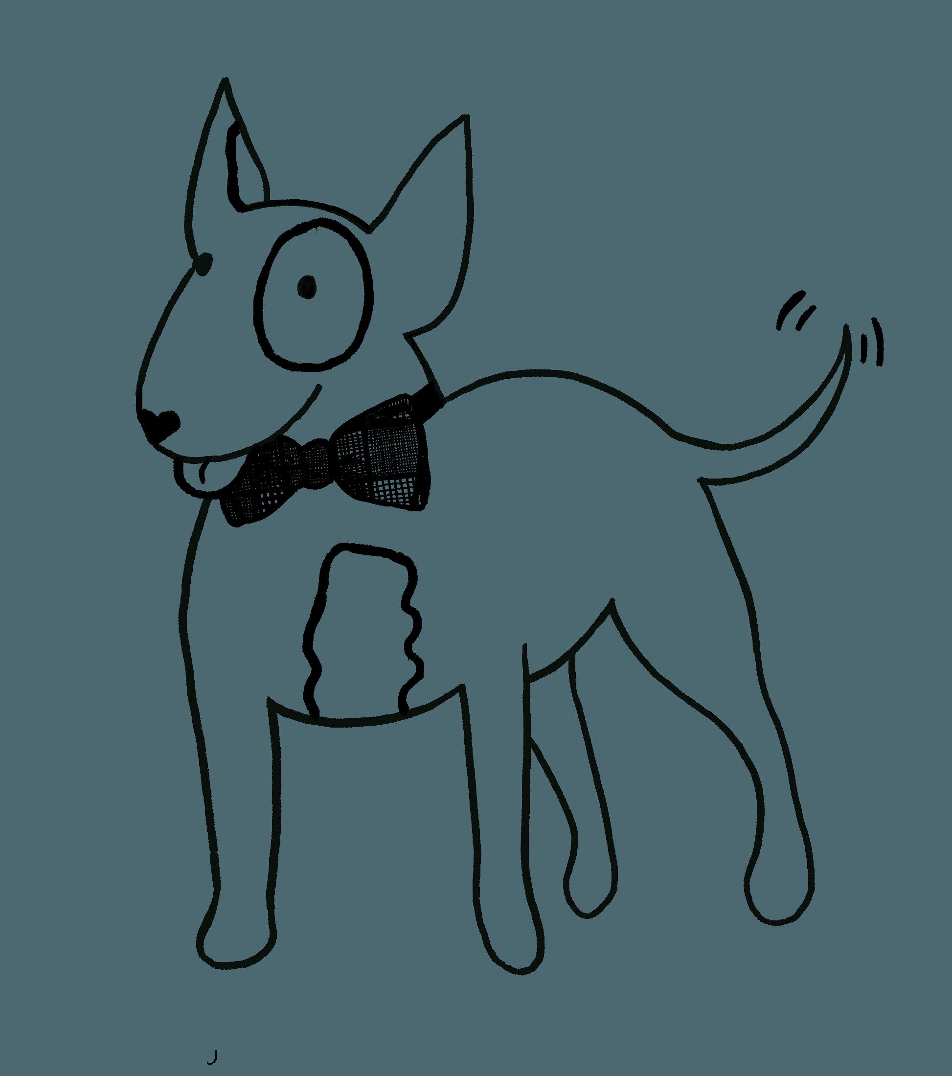 behawiorysta psi kurs