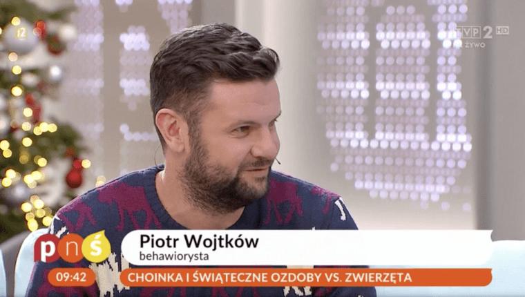 choinka i świąteczne ozdoby vs zwierzęta Piotr Wojtków