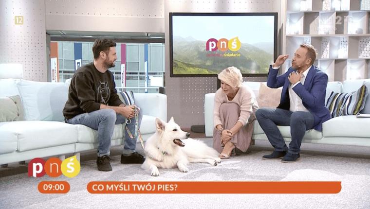 co myśli twój pies wywiad z Piotrem Wojtków