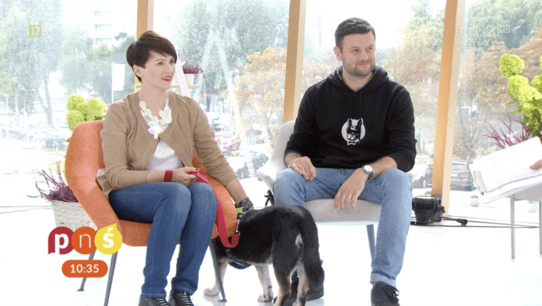 trenerzy psów z psem