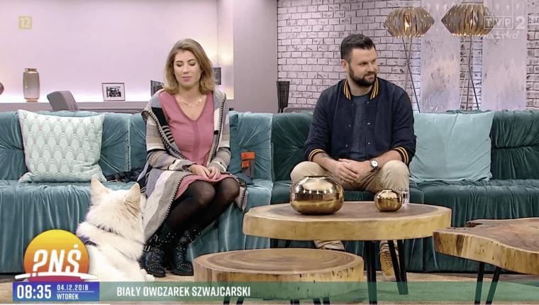 Zofia i Piotr Wojtków w pytaniu na śniadanie opowiadają o białym owczarku szwajcarskim