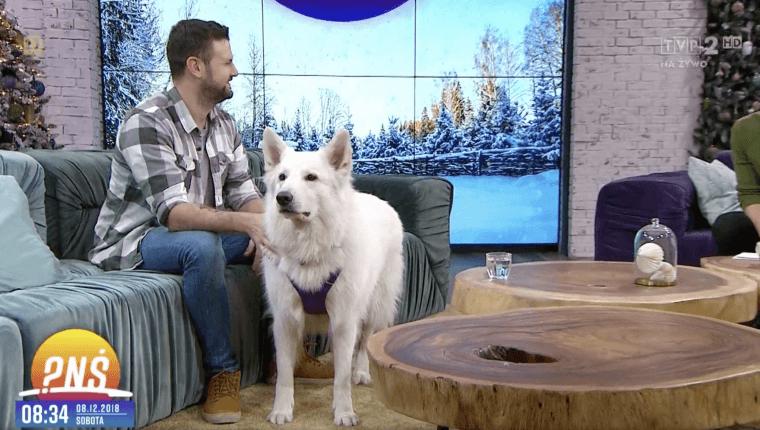 behawiorysta psów w pytaniu na śniadanie ze swoim psem