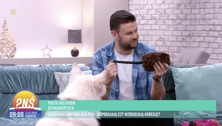 szarpaki i gryzaki dla psa uspokajają czy wzbudzają agresję Piotr Wojtków pnś