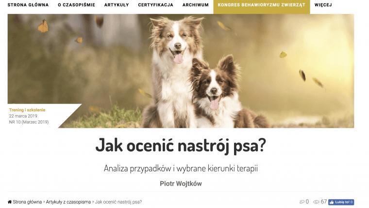 jak ocenić nastrój psa Piotr Wojtków