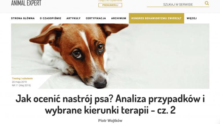 Jak ocenić nastrój psa - kierunki terapii