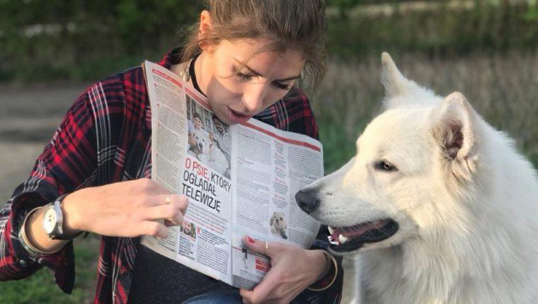 szkolenie psów gazeta