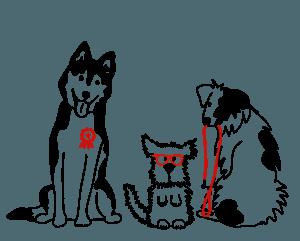 animowane doświadczone psy