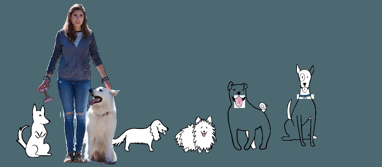 Tresura psów - Zosia Zaniewska-Wojtków behawiorystka dla psa
