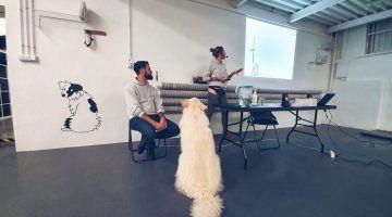 Szkoła dla psów Warszawa